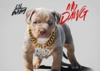 20201023 035030 - Lil Baby - My Dawg mp3 download