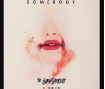 20210123 010116 - The Chainsmokers - Somebody ft Drew Love mp3 download